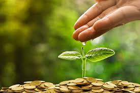 Taweez For Prosperity 2021